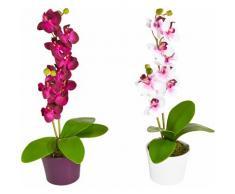 Kunstpflanze (Set, 2 Stück) bunt Kunstorchideen Kunstpflanzen Wohnaccessoires