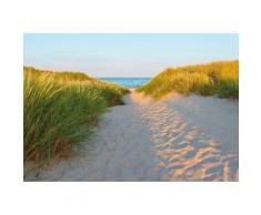 Fototapete Sandy Path Komar Strand, bunt, blau