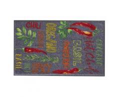 FußmattePreisstarHOTCHILI Hot Chili, waschbar bunt Fußmatten gemustert