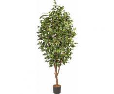 Creativ green Kunstpflanze Ficus Benjamini (1 Stück) grün Kunstbäume Kunstpflanzen Wohnaccessoires
