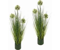 I.GE.A. Kunstpflanze Grasbusch Allium 62 cm (Set, 2 Stück) grün Künstliche Zimmerpflanzen Kunstpflanzen Wohnaccessoires