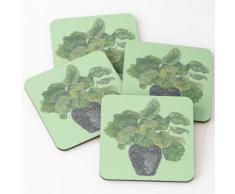Peperomia Zimmerpflanze Untersetzer