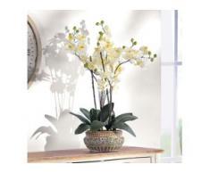 Schneider Kunstpflanze Orchidee, weiß