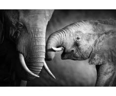 Leinwandbild Elefant bunt Kunstdrucke Bilder Bilderrahmen Wohnaccessoires