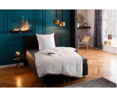 Federbettdecke + Federkissen, Jonas, Hanse by RIBECO, (Set) weiß Bettdecken Set Bettdecken, Kopfkissen Unterbetten Bettwaren-Sets