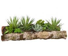 Creativ green Kunstpflanze Sukkulenten (1 Stück) grün Kunstkakteen Kunstpflanzen Wohnaccessoires