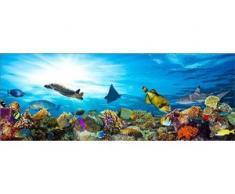 Deco-Glas Bild - Aquarium 80 x 30 cm