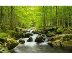 papermoon Vlies- Fototapete Digitaldruck 350 x 260 cm, Soft Water Stream