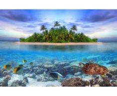 papermoon Vlies- Fototapete Digitaldruck 250 x 180 cm, Marine Life Maldives