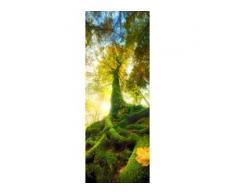 Deco-Glas Bild - Green Tree 80 x 30 cm