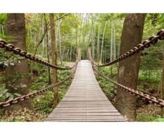 papermoon Vlies- Fototapete Digitaldruck 250 x 180 cm, Suspension Bridge