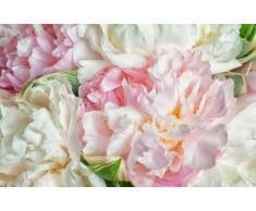 papermoon Vlies- Fototapete Digitaldruck 350 x 260 cm, Blooming Peonies