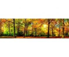 papermoon Vlies- Fototapete Digitaldruck 350 x 100 cm, Autem Forrest