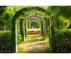 papermoon Vlies- Fototapete Digitaldruck 350 x 260 cm, Pergola Garden