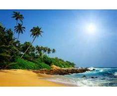 papermoon Vlies- Fototapete Digitaldruck 350 x 260 cm, Sri Lanka Tropical Beach