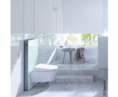 Geberit Monolith Sanitärmodul für Wand-WC H: 101 cm, Glas mint 131022SL5