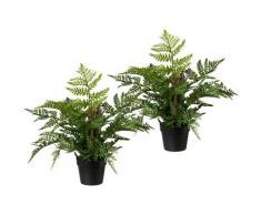 Künstliche Zimmerpflanze, Creativ green, Höhe 40 cm