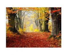 Fototapete »Autumn Forest Path«, glatt