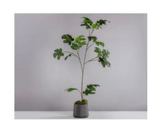 Künstliche Zimmerpflanze »Feige«, Blütenwerk, Höhe 120 cm