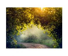 Fototapete »Misty Forest in Spring«, glatt