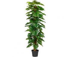 Künstliche Zimmerpflanze »Monsterapflanze« Grünpflanze, Creativ green, Höhe 190 cm