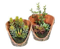 Künstliche Zimmerpflanze »Henrike« Sukkulente, DELAVITA, Höhe 12 cm, in Tontopfoptik, 2er Set