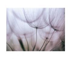 Fototapete »Purple Abstract Dandelion«, glatt