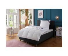 Daunenbettdecke + 3-Kammer-Kopfkissen, »Venedig«, Excellent, Füllung: Bettdecke: 90% Daunen, 10% Federn, Bezug: 100% Baumwolle, Anschmiegsam und kuschelig, im Set günstiger