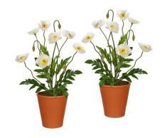 Künstliche Zimmerpflanze, Creativ green, Höhe 38 cm, im Tontopf (2er Set)