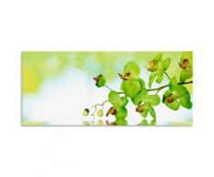 Artland Küchenrückwand »Schöne Orchidee mit grünem Hintergrund«, (1-tlg), selbstklebend in vielen Größen - Spritzschutz Küche hinter Herd u. Spüle als Wandschutz vor Fett, Wasser u. Schmutz - Rückwand, Wandverkleidung aus Alu