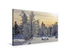 Calvendo Premium Textil-Leinwand 75 cm x 50 cm quer, Finnland   Wandbild, Bild auf Keilrahmen, Fertigbild auf echter Leinwand, Leinwanddruck Natur Natur
