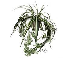 Mica decorations 918252 Chlorophytum L45D45 gruen in Topf Stan D11.5 grau Kunstpflanze, Polyester, 45 x 45 x 45 cm