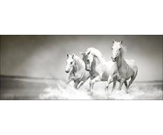 Pro-Art GLA1176C Wandbild Glas-Art White Horses, bunt