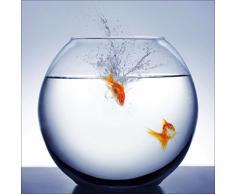 Pro-Art gla495a Wandbild Glas-Art Diving Fish, 30 x 30 cm