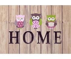 oKu-Tex Fußmatte | Schmutzfangmatte | Deco-Style Entrance | Home Eulen | Aufdruck bunt | für innen | Eingangsbereich / Haustür / Treppenhaus | rutschfest | 40x60 cm