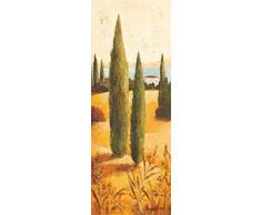 Eurographics CA2140 Hochwertiger Kunstdruck - Italien - Toskana, Claudia Ancilotti, Montecastello I 13 x 35 cm