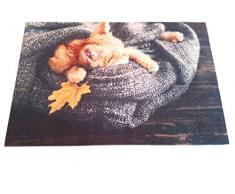 oKu-Tex Fußmatte | Schmutzfangmatte | Deco-Star | Aufdruck/Motiv | schlafende Katze | Tiere | Dekorativ | Innenbereich | rutschfest | 40x60 cm
