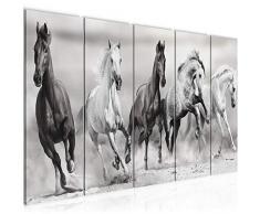 Bilder Pferde Wandbild 200 x 80 cm Vlies - Leinwand Bild XXL Format Wandbilder Wohnzimmer Wohnung Deko Kunstdrucke Weiß 5 Teilig - MADE IN GERMANY - Fertig zum Aufhängen 014155c