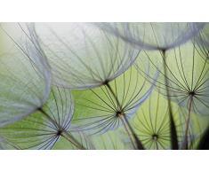 Olimpia Design 271VEXXL Fototapete, Vlies, mehrfarbig, 0.02 x 312 x 219 cm