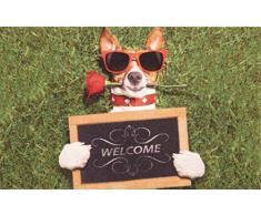 oKu-Tex Fußmatte | Schmutzfangmatte | Deco-Star | Aufdruck/Motiv | Hund mit Sonnenbrille | Welcome | lustig | Innenbereich / Eingangsbereich | rutschfest | 50x80 cm