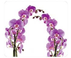 WENKO 2712917500 Multi-Platte Orchideenblüte, für Glaskeramik Kochfelder, Schneidbrett, Wandblende, Gehärtetes Glas, 56 x 0.5 x 50 cm, Mehrfarbig