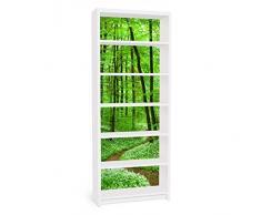 Apalis 90794 Möbelfolie für Ikea Billy Regal - Romantischer Waldweg, größe 2 mal, 94 x 76 cm