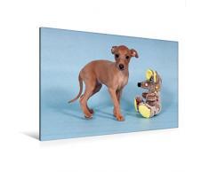 Premium Textil-Leinwand 120 x 80 cm Quer-Format Welpe, 6 Wochen, mit Spielzeug | Wandbild, HD-Bild auf Keilrahmen, Fertigbild auf hochwertigem Vlies, Leinwanddruck von Angelika Joswig