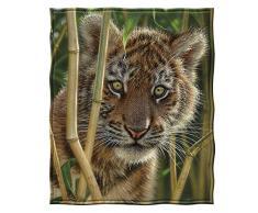 Collin Bogle Dawhud Direct Fleecedecke Discovery Tiger Cub