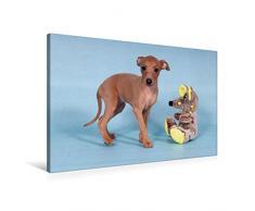 Premium Textil-Leinwand 90 x 60 cm Quer-Format Welpe, 6 Wochen, mit Spielzeug | Wandbild, HD-Bild auf Keilrahmen, Fertigbild auf hochwertigem Vlies, Leinwanddruck von Angelika Joswig