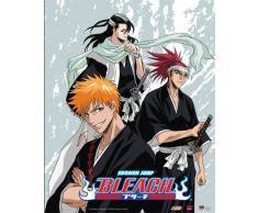 Great Eastern Entertainment Bleach Ichigo Renji Byakuya Wall Scroll, 33 von Blumenkasten
