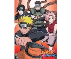 Unbekannt Great Eastern Entertainment Naruto Shippuden Team Kakashi Wall Scroll, 33 von Blumenkasten