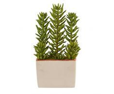 Nearly Natural Fast Natur Sukkulente Kunstpflanze mit Übertopf, 43,2 cm