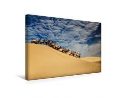 Calvendo Premium Textil-Leinwand 45 cm x 30 cm quer, Mühsam | Wandbild, Bild auf Keilrahmen, Fertigbild auf echter Leinwand, Leinwanddruck: Auch für Kamele ist Wüstensand kein Kinderspiel Natur Natur
