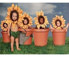 Buyartforless 5 Sunflower Kinder in Blumentöpfe Foto 36,5 x 24,5 Kunstdruck Poster Super Babys Baby niedliche Funny gelb